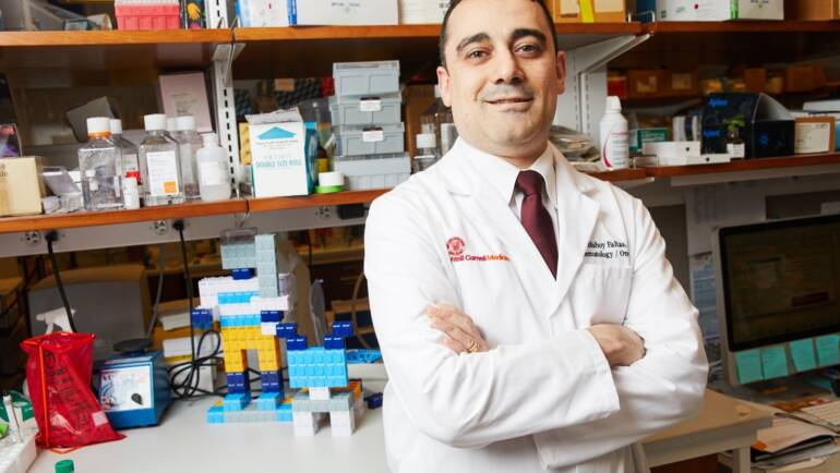 More Effective Therapies for Bladder Cancer