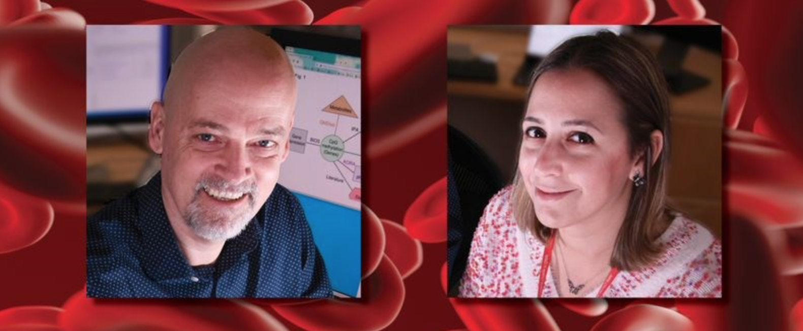 Exploring the Role of Proteins in Obesity